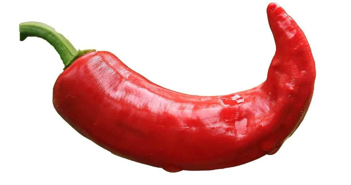 peperoncini più piccanti